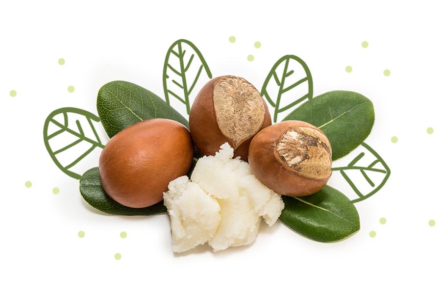 Ingredientes activos que debes buscar si tienes piel seca