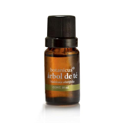 Aceite Esencial - Árbol de Té