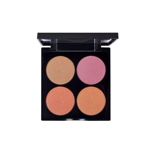 Blush Palette 102