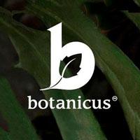 Icono de Botanicus