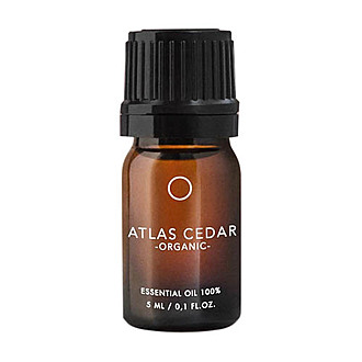For All Folks - Atlas Cedar -Organic 5ml