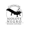Icono de la marca Ajolote Negro