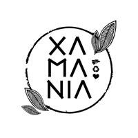 Icono de Xamania